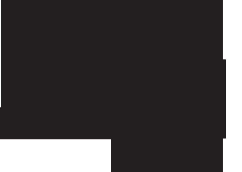 LungA